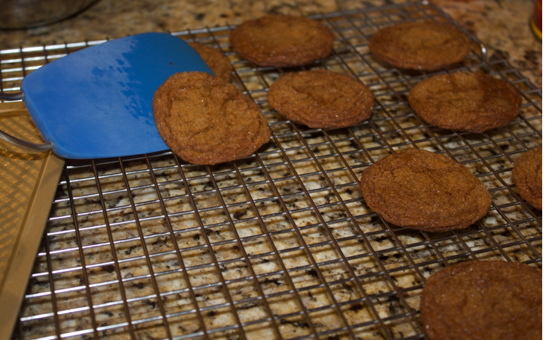 holiday baking molasses cookies